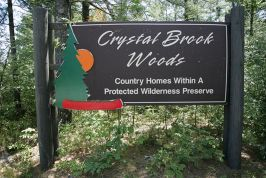 Crystal Brook Woods Pictures