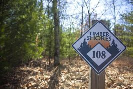Timber Shores Pictures