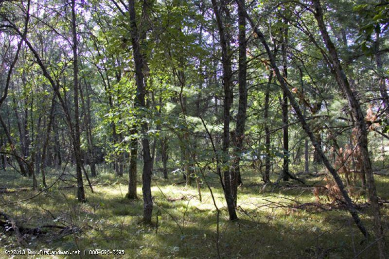 1690930 5 acre Camping or Building site near Wisconsin Dells