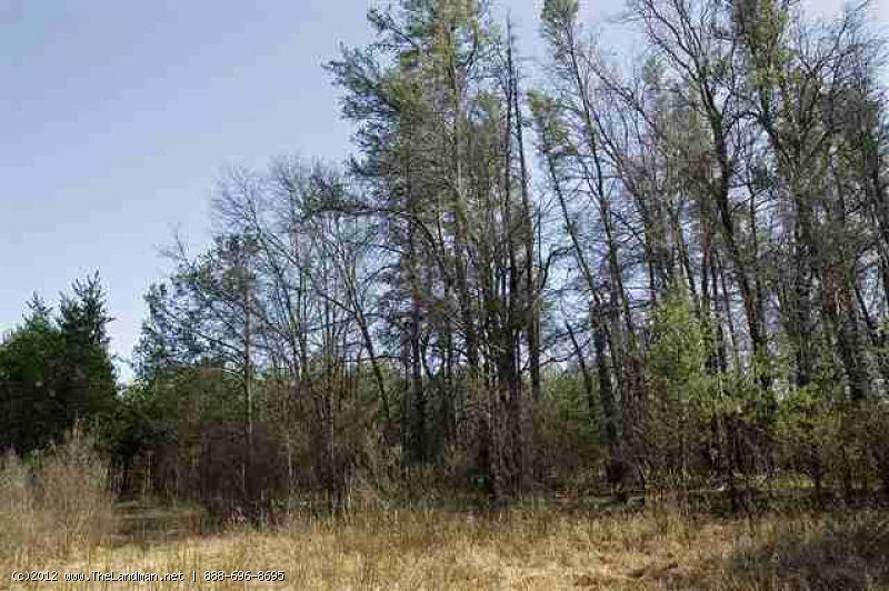 1592001 - 8 Private Wooded Acres Near Public Land, WI!